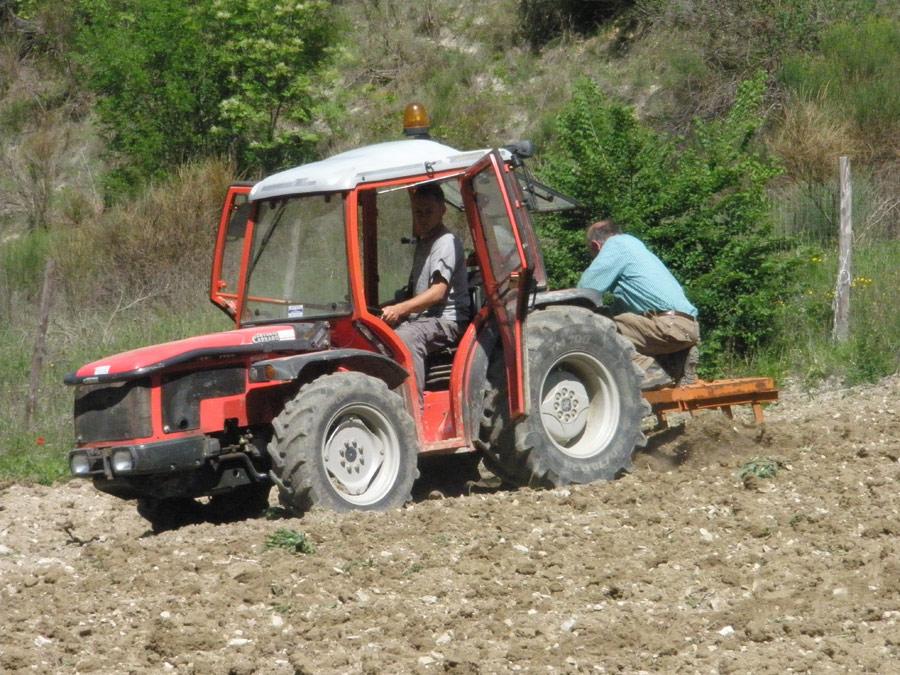 trattore-luca-claudio